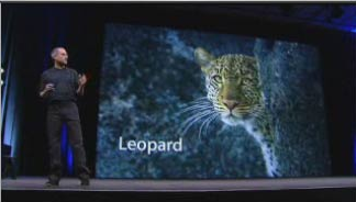 Apple is the cat