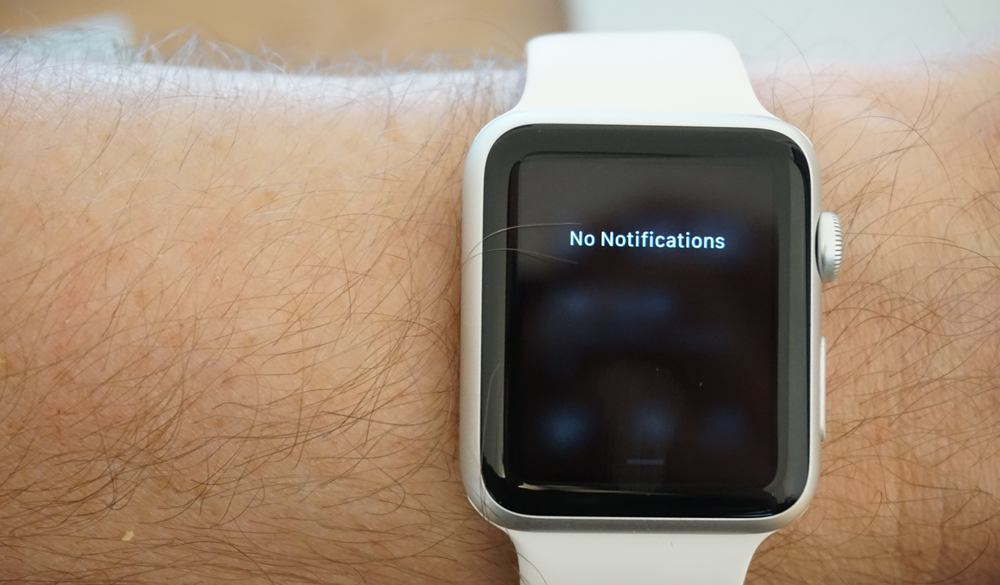 apple-watch-diary-month-2