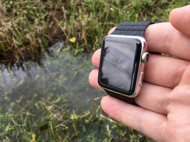 Apple Watch Sun