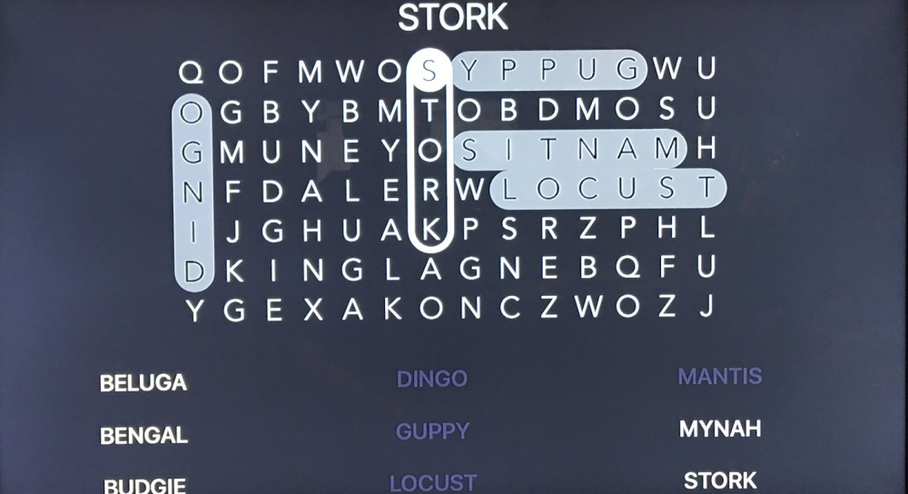 wordsgalore