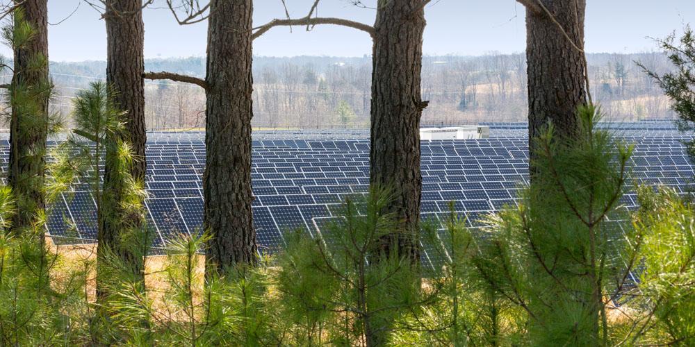 apple-solar-array1