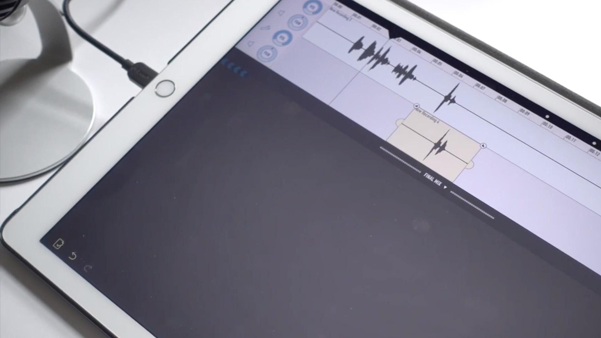 iPad Pro Ferritte