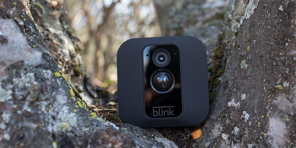 blink-xt