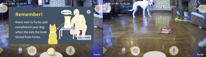 furbo-app-features-02