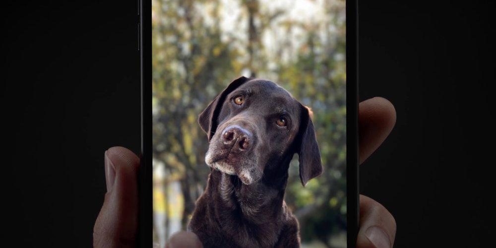 iphone-7-plus-potrait-mode-dog
