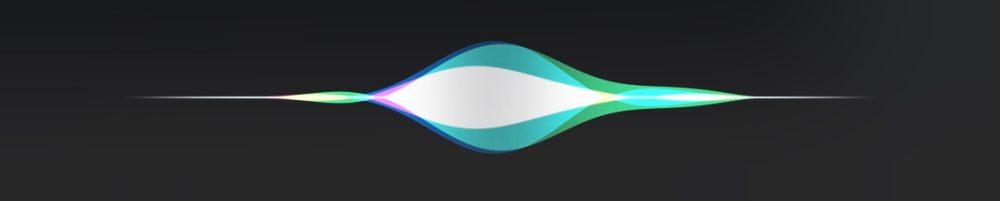 Siri wave form