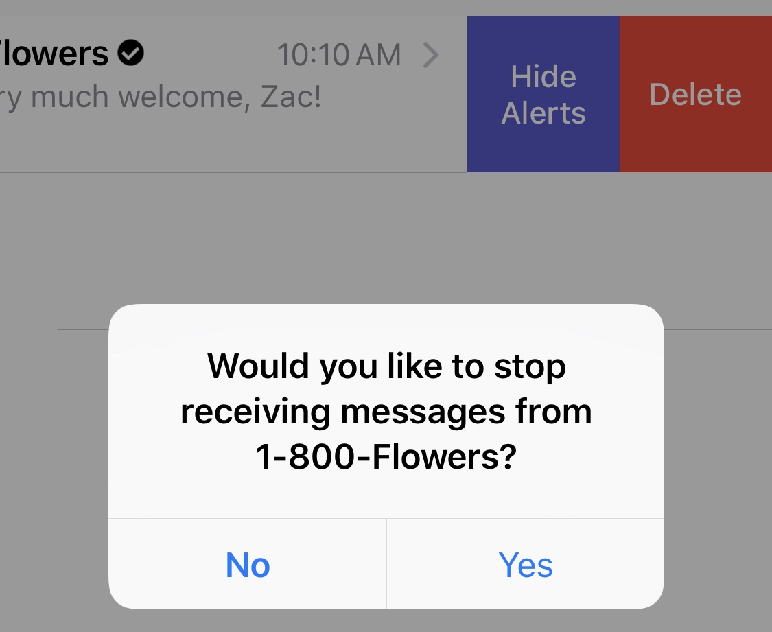 Hands-on with Business Chat for iMessage in iOS 11 3 and macOS 10 13