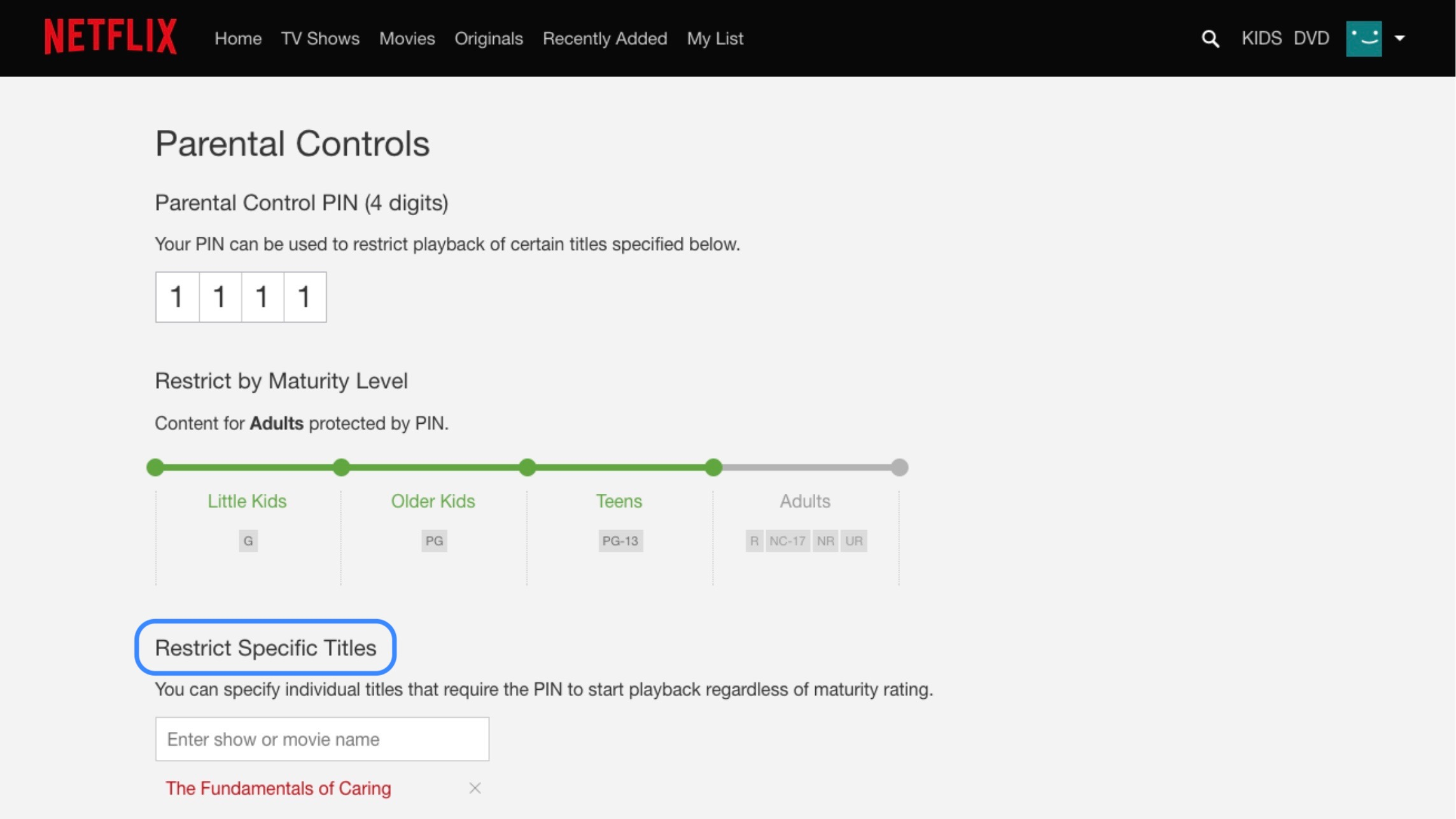 Netflix app parental controls