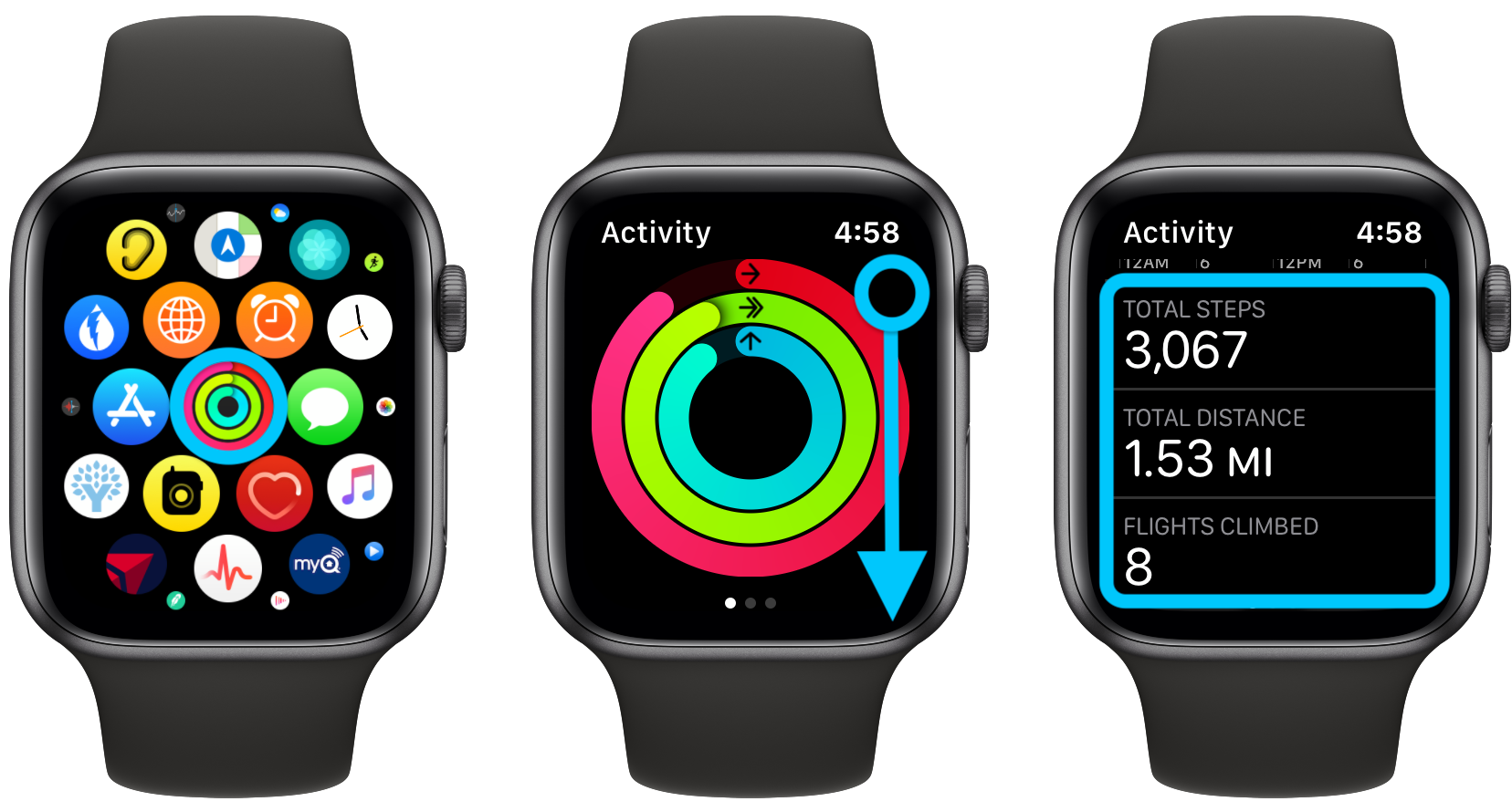 How to see steps Apple Watch, distance, flights, more