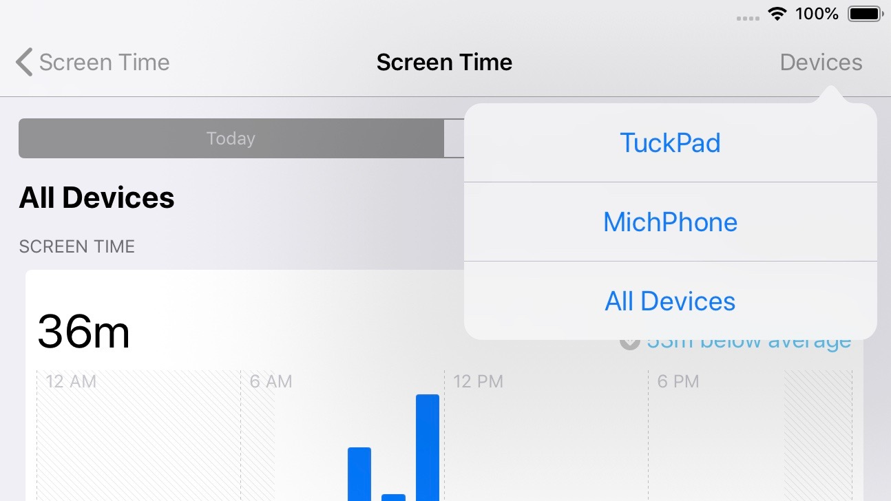 Screen Time dashboard iPad iOS