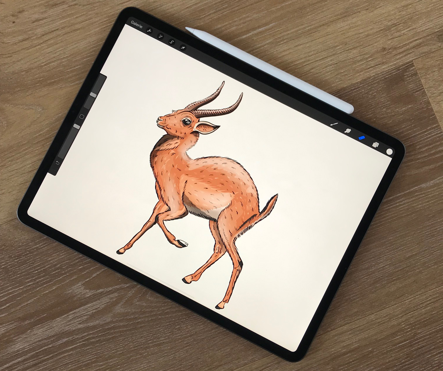 iPad creative workflows