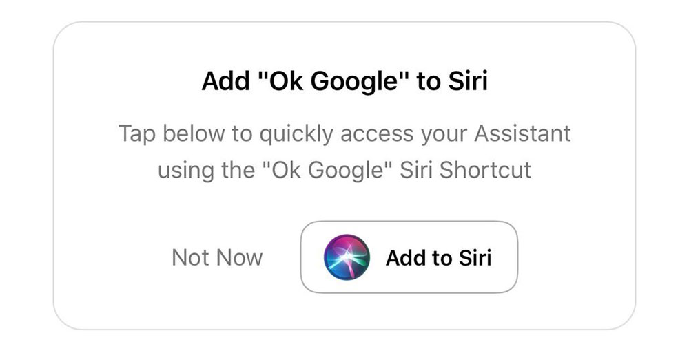 You can now say 'Hey Siri, Ok Google' to use Google Assistant on the