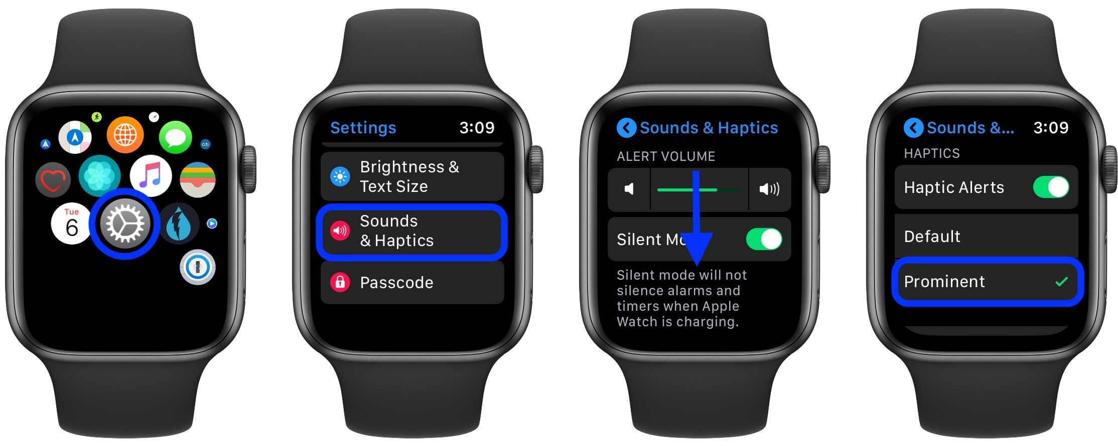 turn up haptic vibration feedback on Apple Watch
