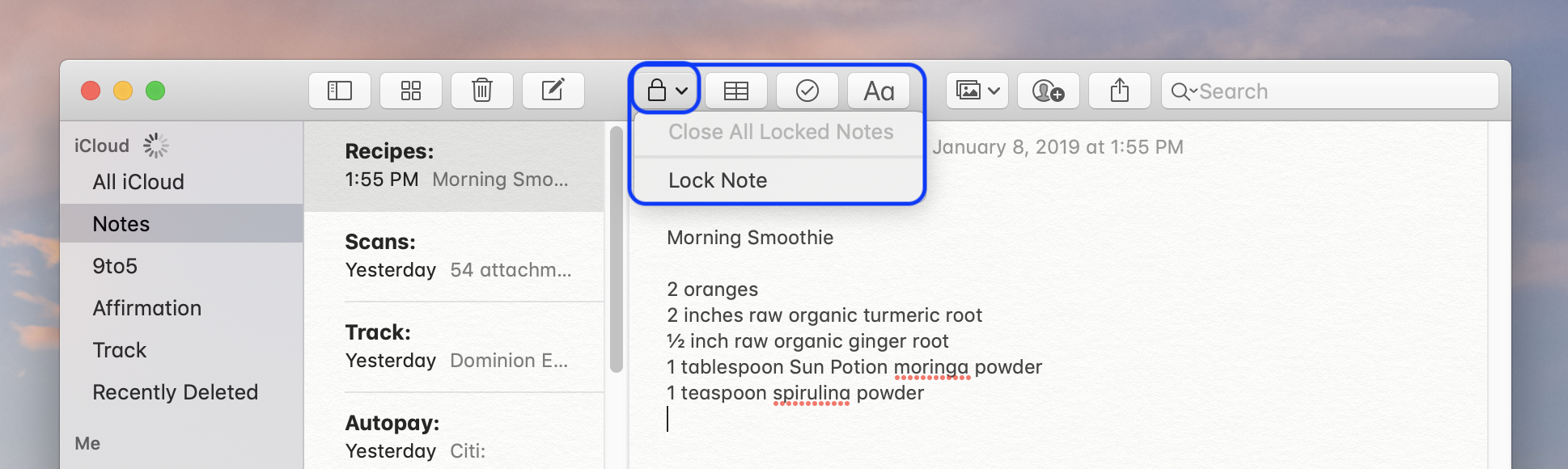 How to lock notes on Mac