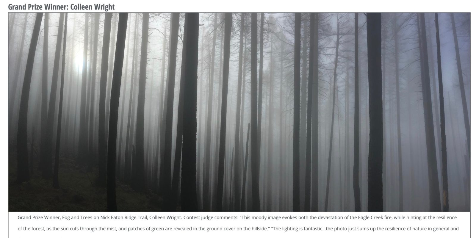 Image Shot with iPhone 6 Wins Annual Columbia Gorge Photography Contest