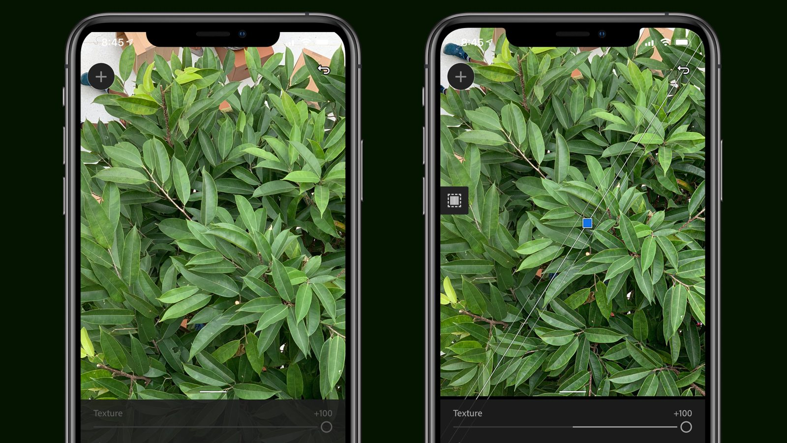 photo of Adobe Lightroom's new Texture tool enhances individual details without impacting your entire photo image