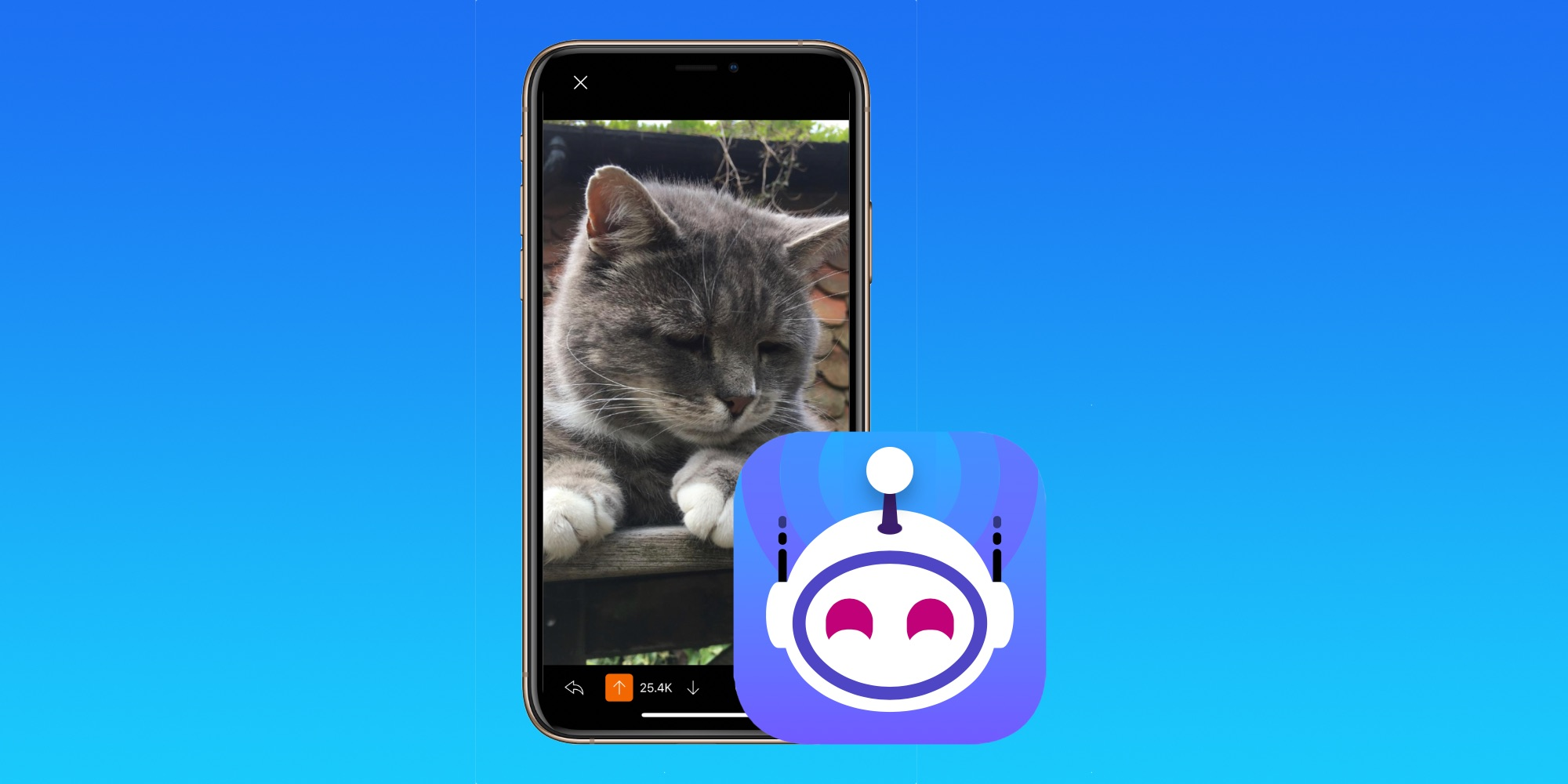 All proceeds from Apollo Reddit app going to SPCA
