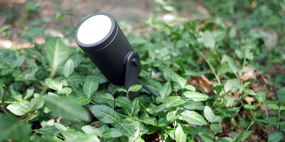 Hue Spot Light in woods