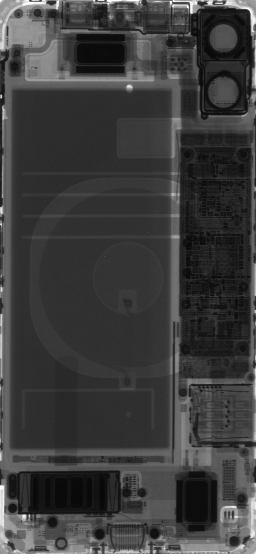 iPhone 11 and 11 Pro internal and x-ray