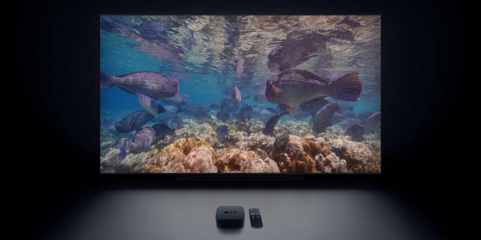 Apple Tv Now Features 10 Beautiful Underwater Video Screensavers 9to5mac