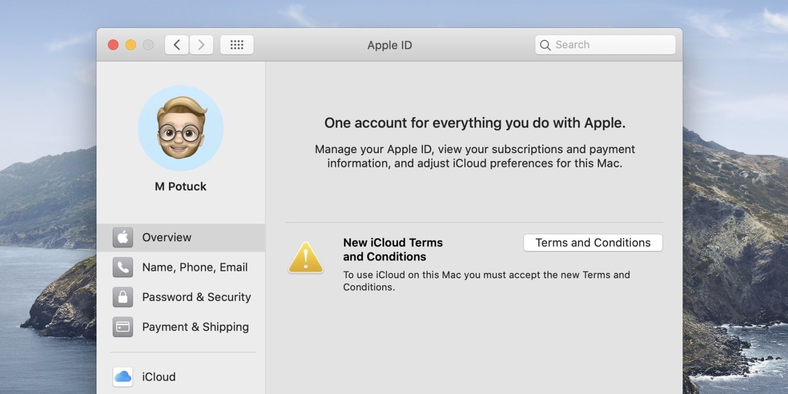 How to fix iCloud terms and conditions bug in macOS Catalina