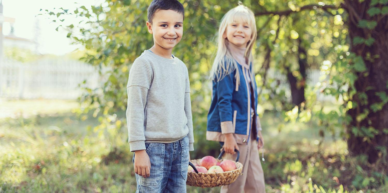 Jony Ive donates $130k for school orchards; says trees key to Apple Park