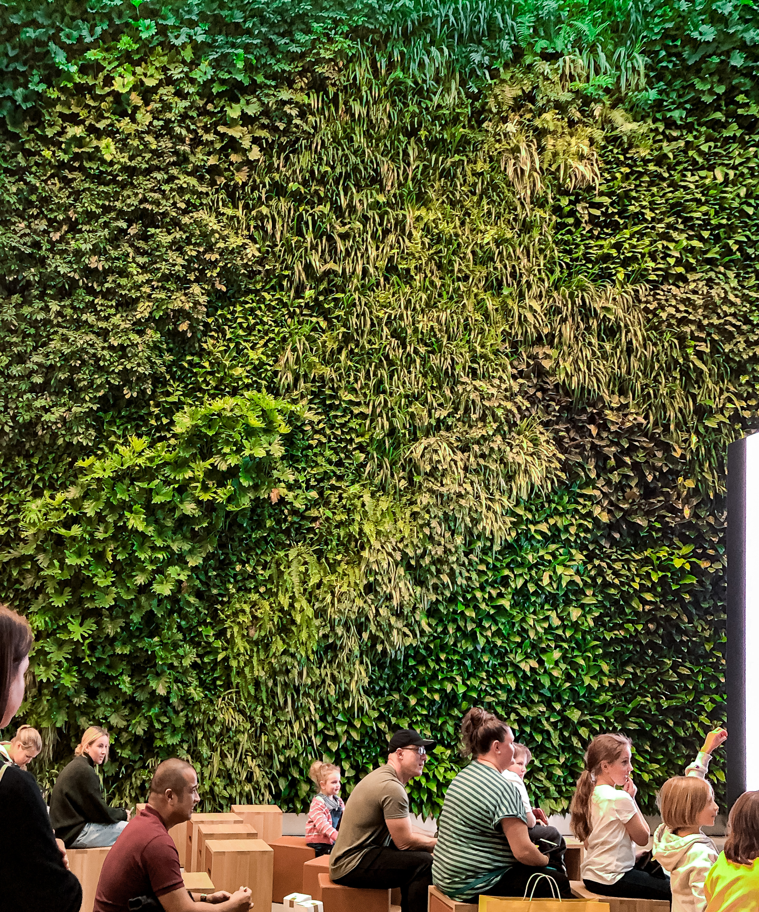 Apple Bondi Green Wall