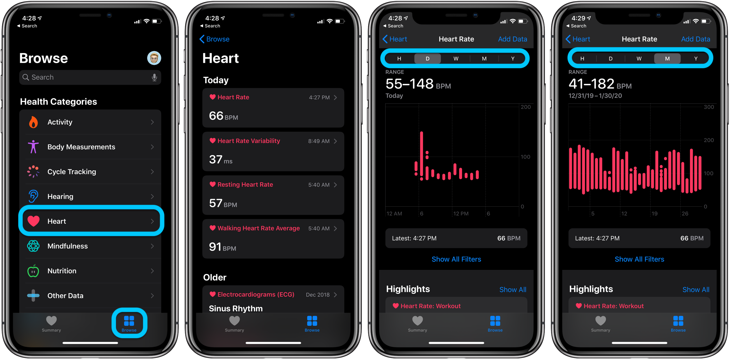 How to see Apple Watch heart rate history - on iPhone