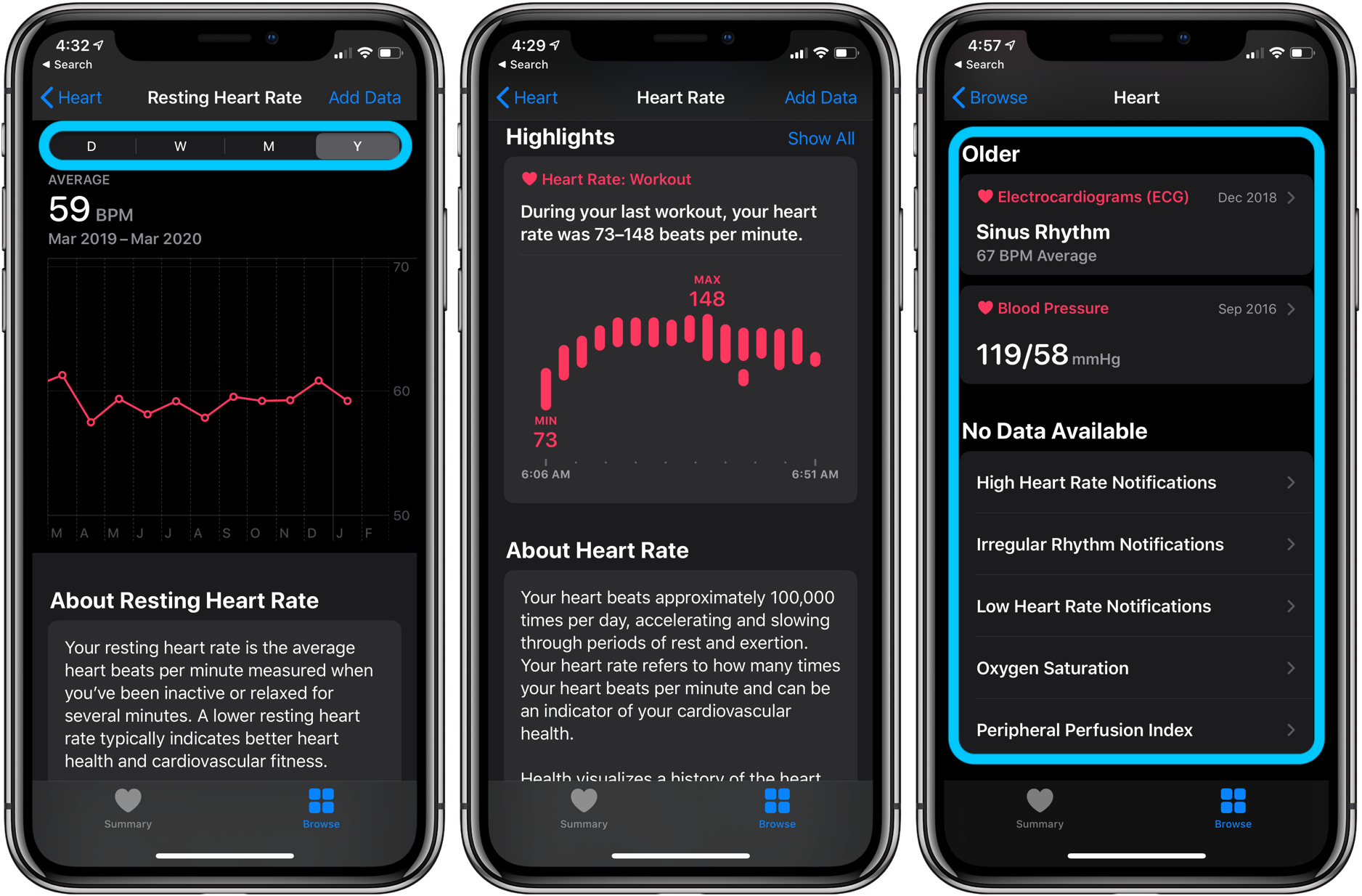 How to see Apple Watch heart rate history - iPhone