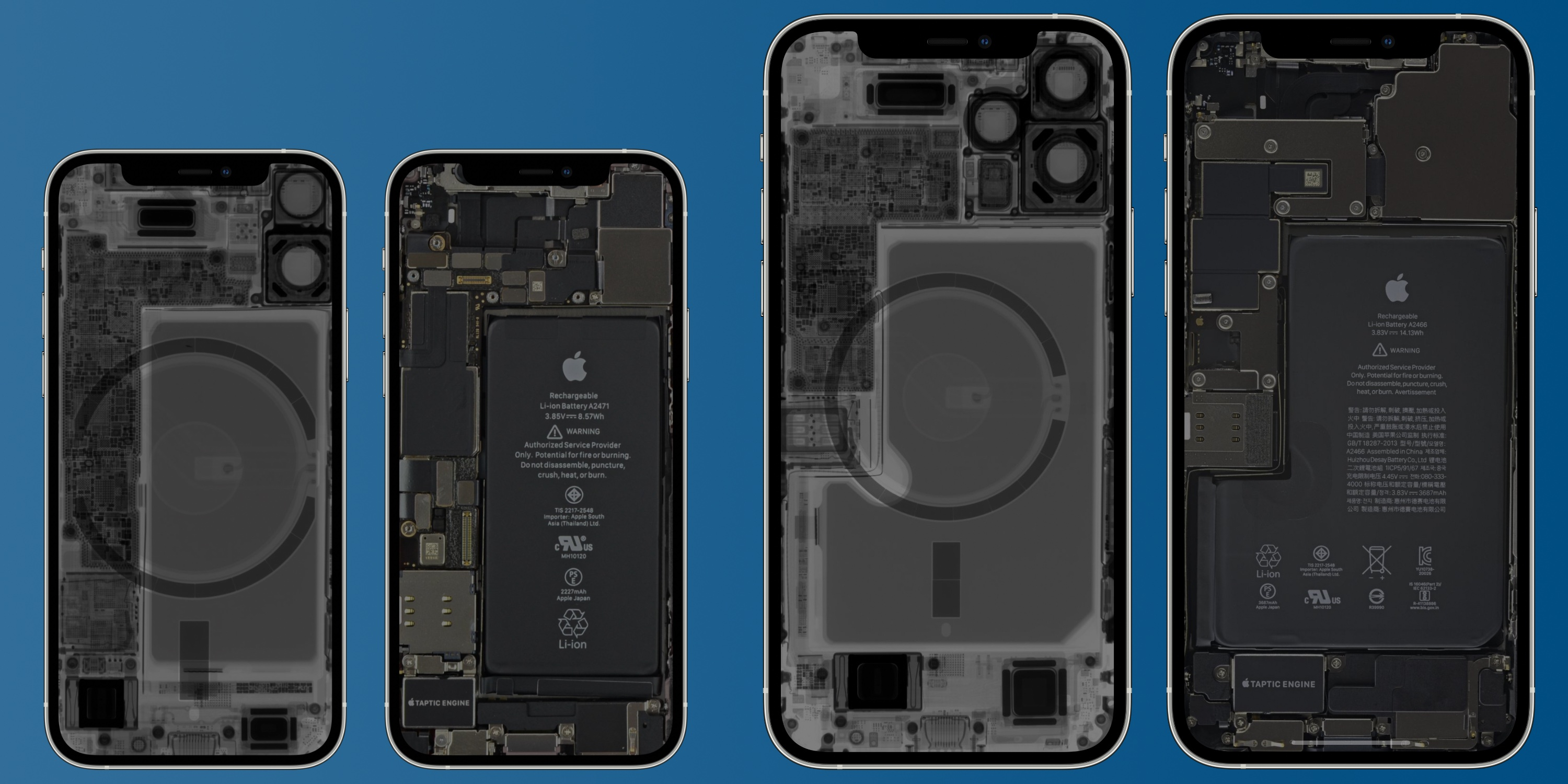 Peek inside your new iPhone 12 mini and iPhone 12 Pro Max with iFixit'sX-ray wallpapers - 9to5Mac