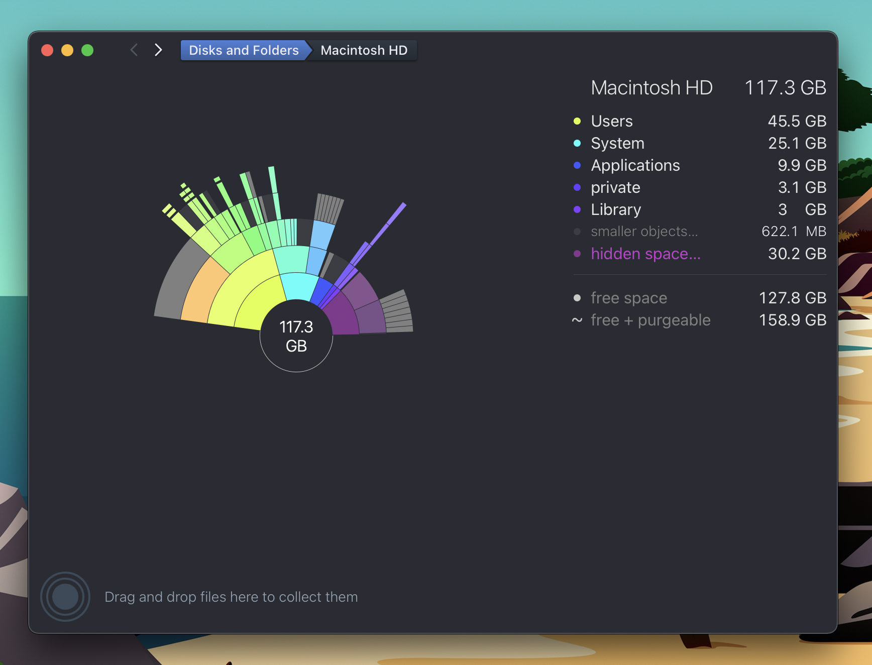 How to free up Mac storage and hidden space walkthrough Daisy Disk