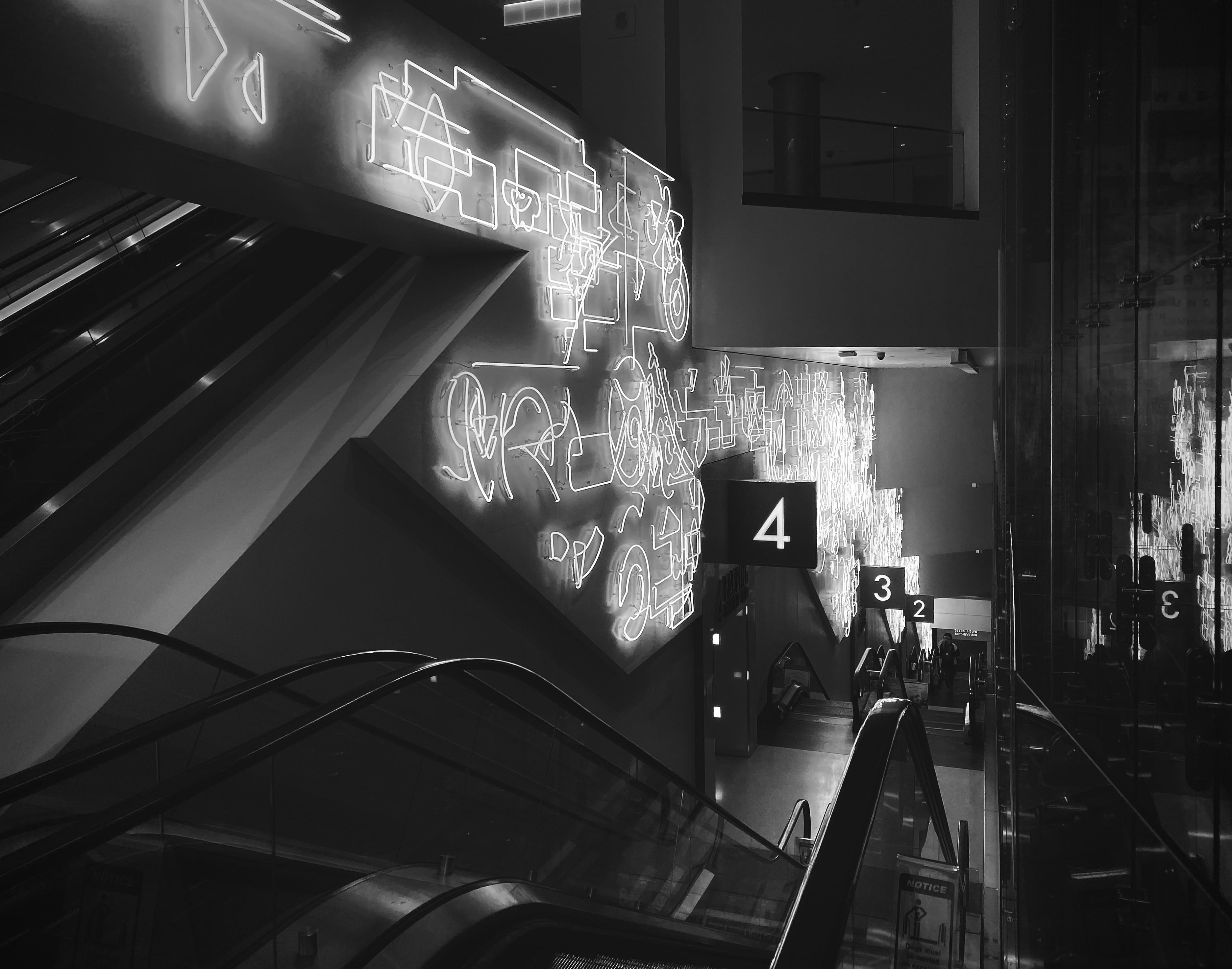 Creative Brief 4: Film Noir